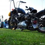 steveb.trishs.bike 11